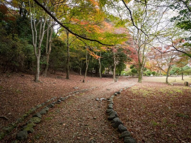 嵐山の落葉の絨毯
