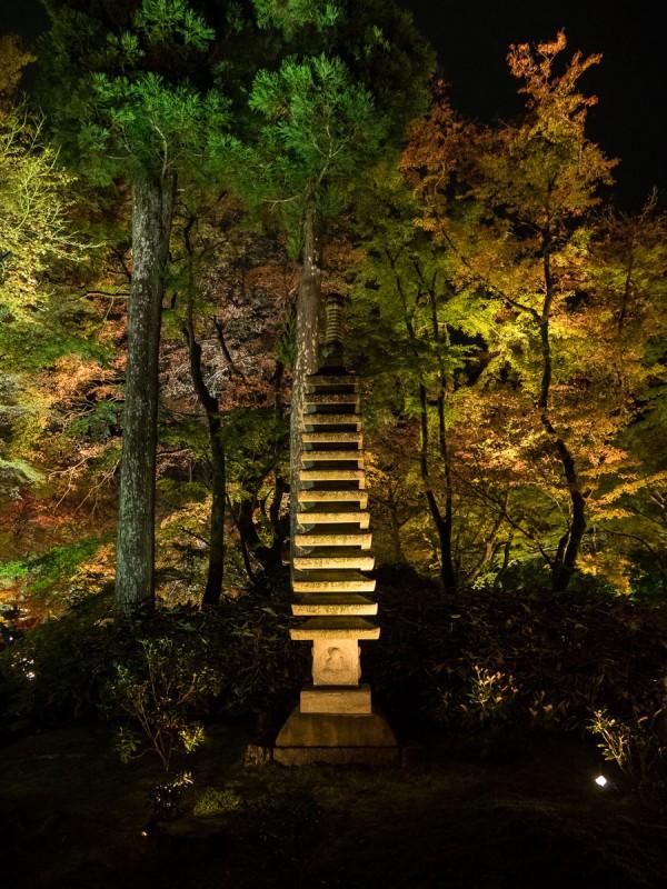 天龍寺宝厳院ライトアップ